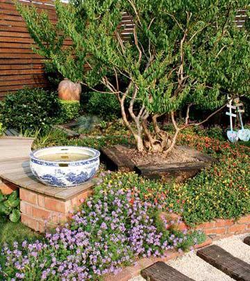 优雅迷情 打造英式园艺风格