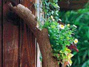 家居园艺 自然展现乡村风草花组合盆栽