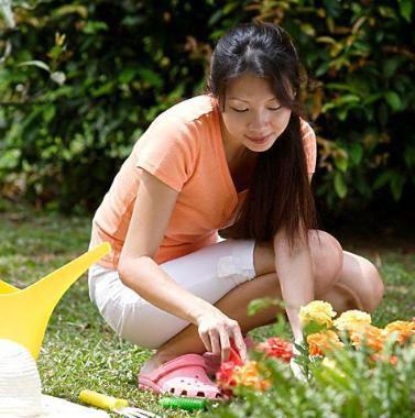 9件园艺工具塑造完美庭院