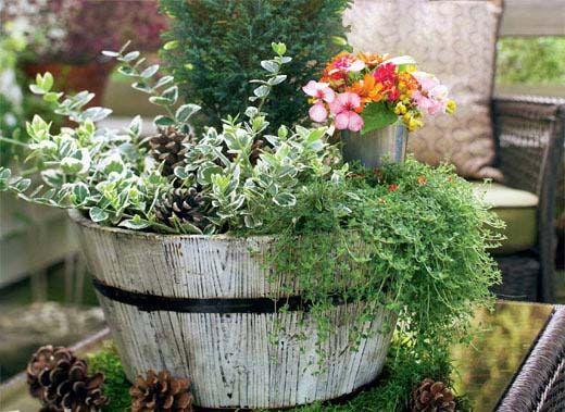 家居饰品DIY 桌上盆栽小花园