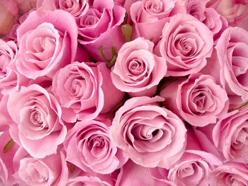 节日送鲜花的艺术