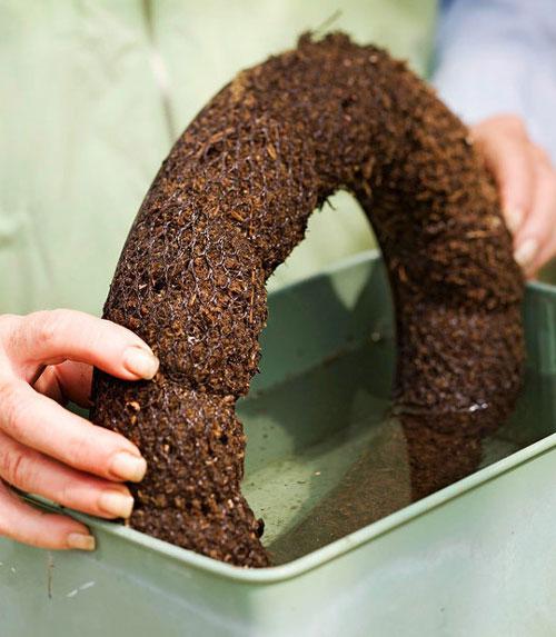 DIY制作漂亮的多肉植物花环(图解)