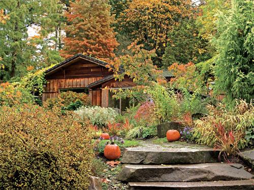 7个种植小妙招 让绚烂在秋冬花园延续