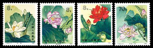 T54:花卉邮票之荷花邮票