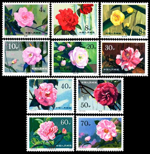 T37:云南山茶花邮票及小型张