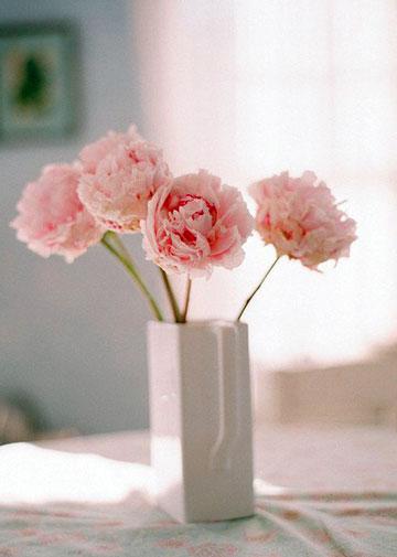 插花艺术的花材处理技巧与插花固定技巧
