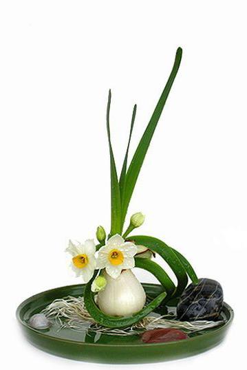 单棵水仙花雕刻之后,还可用多颗水仙球茎精心拼凑