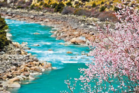 诗的意境花的海洋 早春三月赏花地及攻略