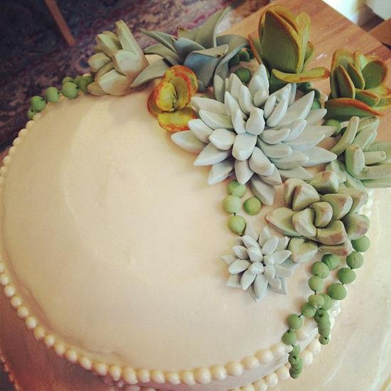 别致多样又超萌的多肉植物变身婚礼装饰