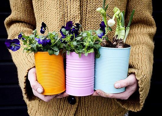 DIY:废旧易拉罐变身美丽的植物花盆