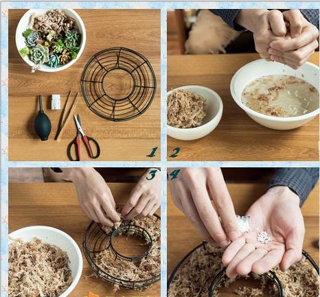 多肉植物花环DIY制作教程及DIY小贴士