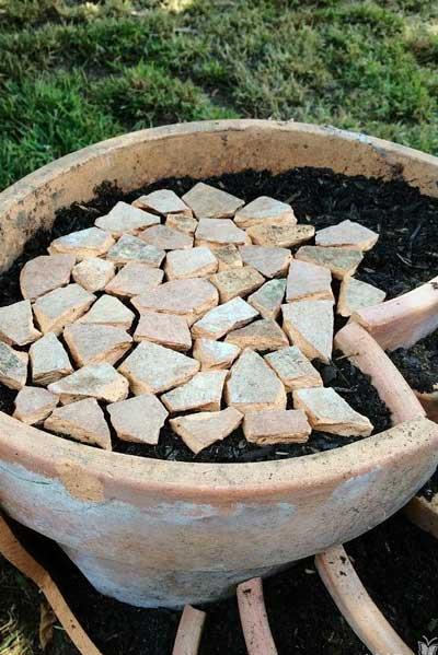 用破陶盆为多肉植物造一个小型的多肉花园