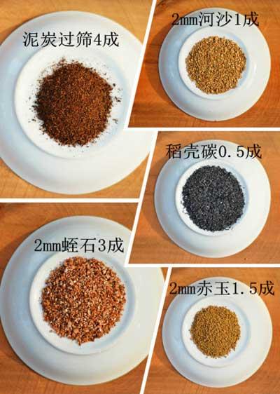 图解:超级简洁的多肉植物播种教程