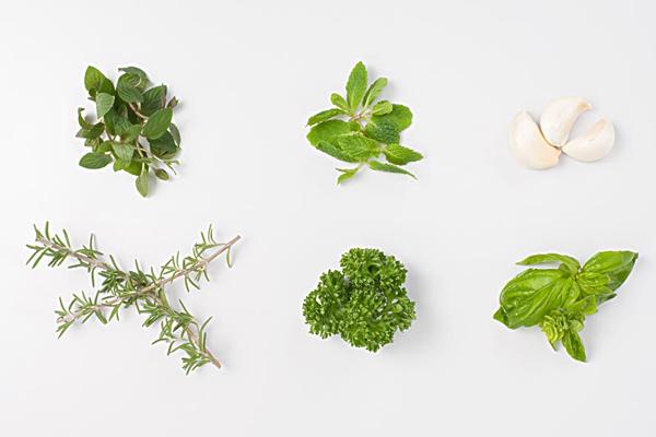 香草意大利 香草的种类与用法
