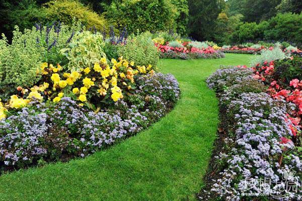 打造美丽秋季花园 秋季花园花材的选择