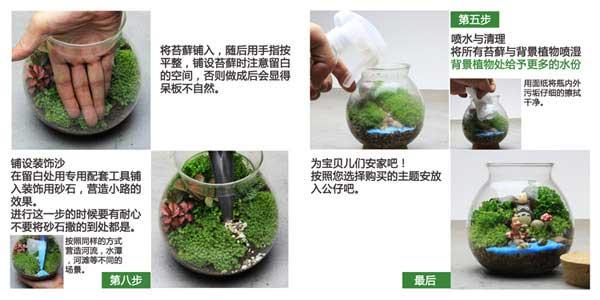 创意瓶景观:苔藓瓶微景观的制作步骤教程