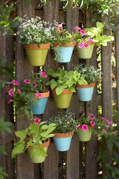 园艺时光:打造属于自己的多彩垂直小花园