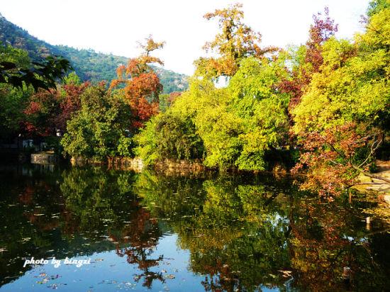 别有韵味的秋 苏州静谧中的另一种美