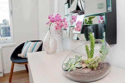 如何将多姿多彩的植物融入到家居布置中