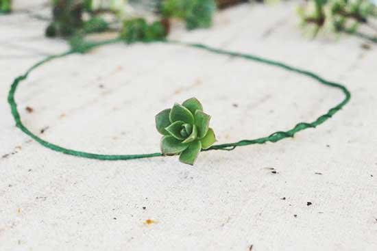 多肉植物的浪漫 巧手DIY多肉新娘花环