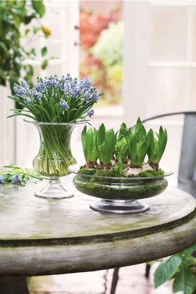 气质出众的花器 与鲜花相衬装饰你的家