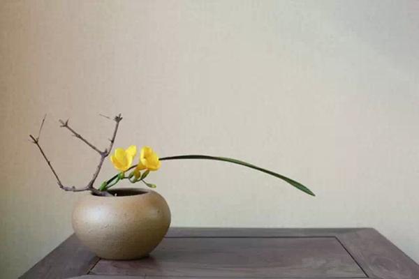 茶室插花与茶席插花的区别和主要特征