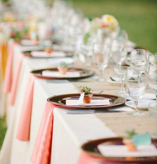 清新可人的多肉植物 为婚礼添增新意