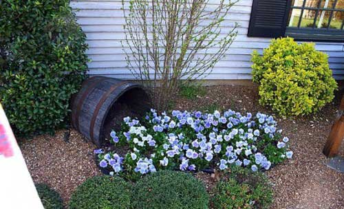Spilled Flower Pots园艺法 让后院美成画卷