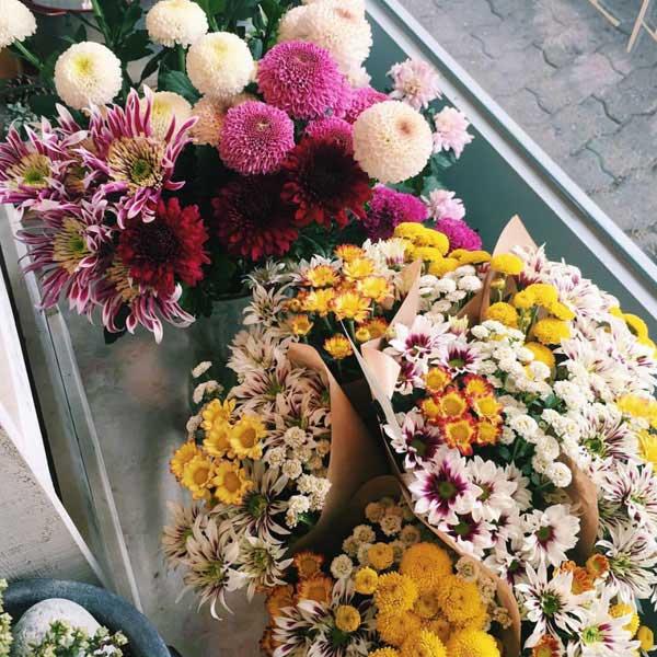 十月插花最值得期待的10种花材