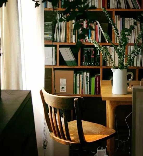 最清新的软装饰品 20款绿植点缀美家添活力