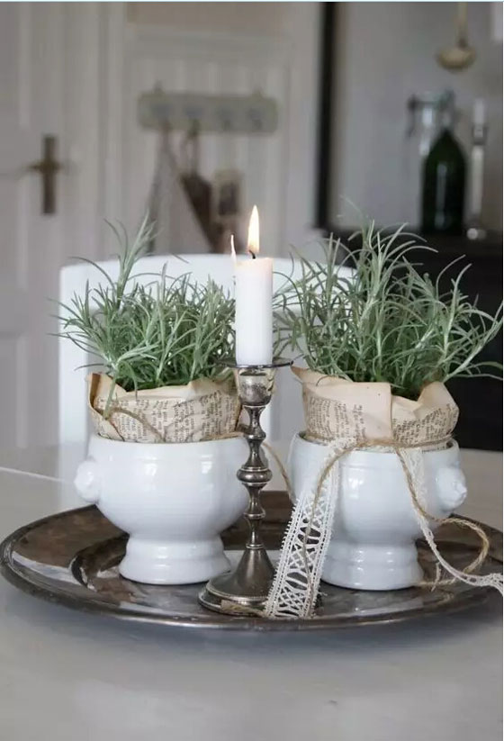 女神插花,厨神种草(附香草种植和食用方法)