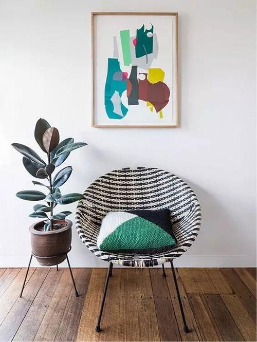 橡皮树 | 这是一种有气质的植物 很适合摆在你家里